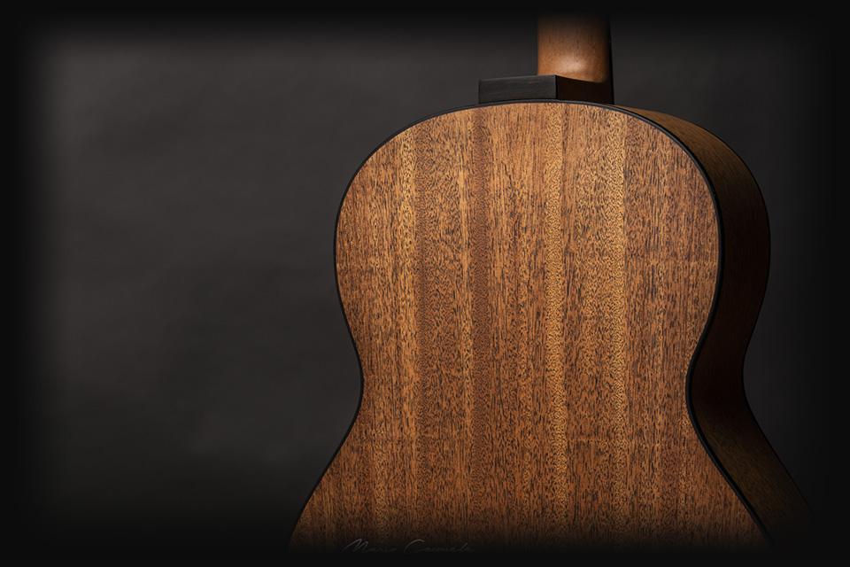 professional-series-luis-guerrero-best-wood
