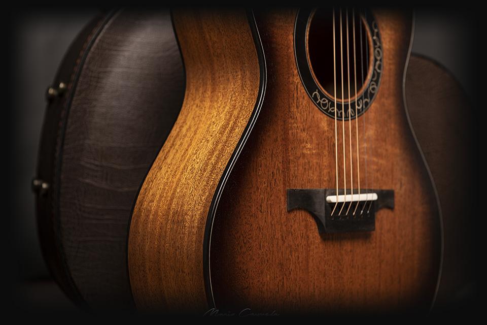 professional-series-luis-guerrero-custom-guitars-details