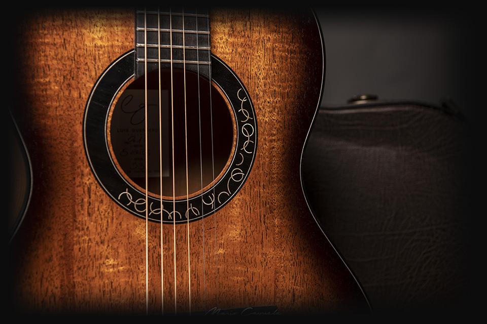 professional-series-luis-guerrero-custom-original-guitars
