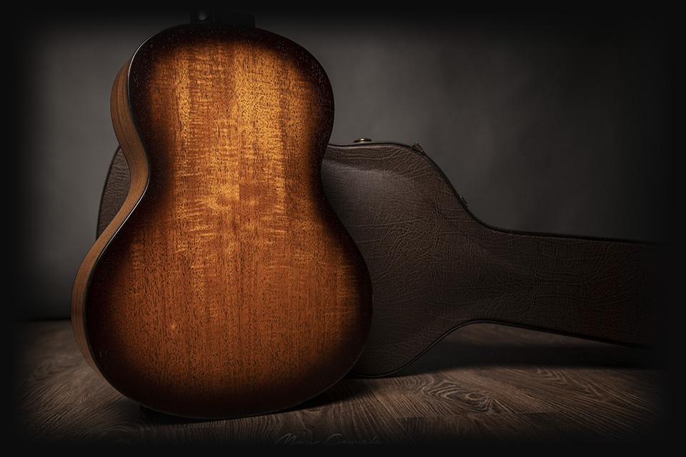 professional-series-luis-guerrero-guitars-back-spain