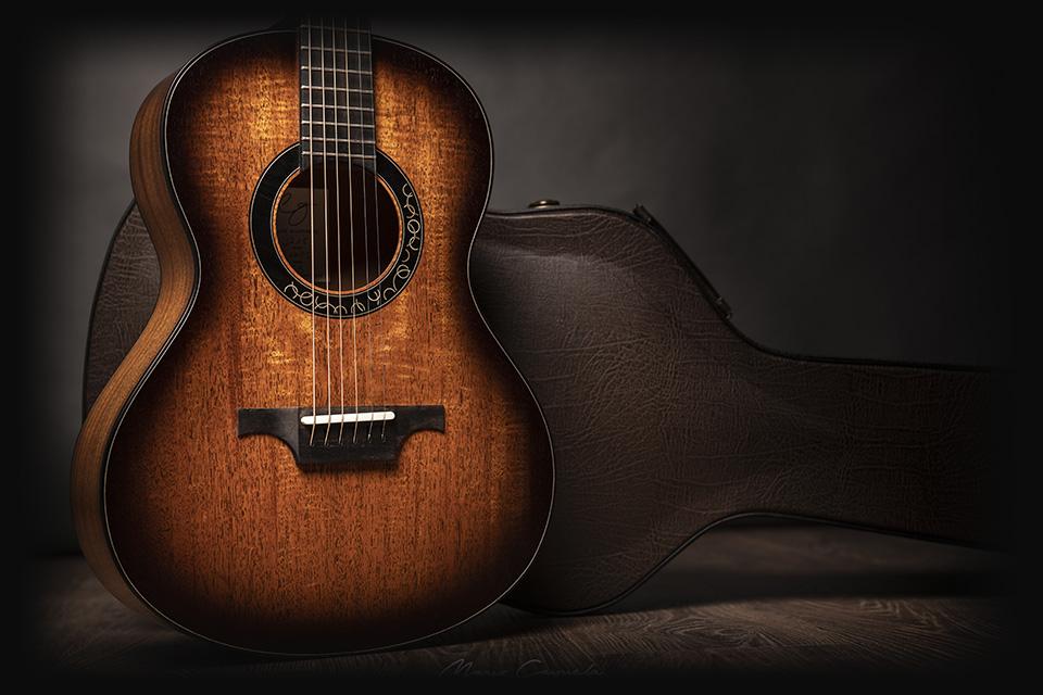 professional-series-luis-guerrero-original-guitars-spain